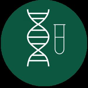 Oligos DNA en tubo