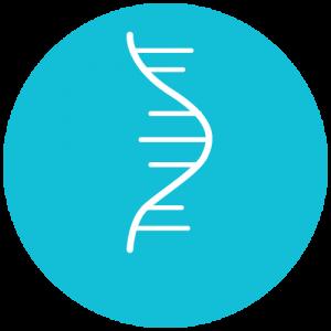 Oligos RNA en tubo